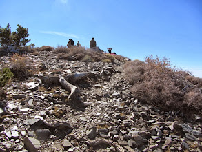 Photo: 11:38—Arriving at the summit of Pine Mountain (9648')—second highest peak in the San Gabriel Mountains