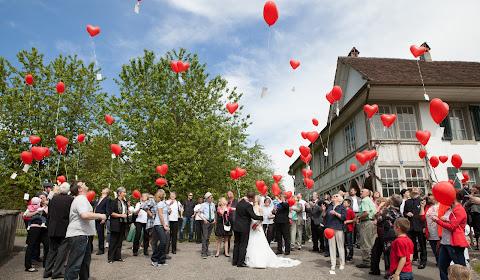 Hochzeitsfotograf Bern (zgerwysling). Foto vom 05.03.2014