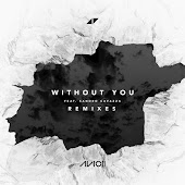 Without You (Remixes)