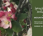 24 September - Spring Festival and Heritage Day at Mountain Cafe : Mountain Cafe