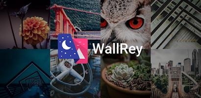 WallRey