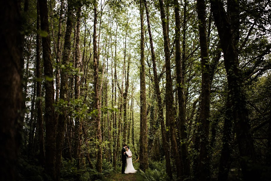 Wedding photographer Dominic Lemoine (dominiclemoine). Photo of 06.06.2019