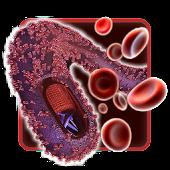 Gaia Ebola 3D