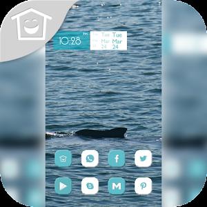 Blue sea dolphin theme