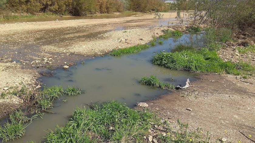 """La tubería rota ha dado lugar a un \""""río de aguas contaminadas\"""" en Guazamara."""