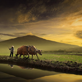 My Country by Alamsyah Rauf - People Street & Candids ( travel )