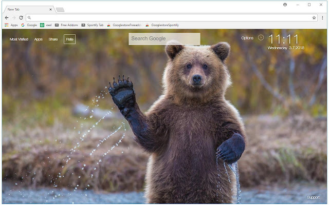 Bears Wallpapers Bear Cubs New Tab Themes