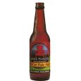 813 Mirror Lake Drive 46'er Pale Ale