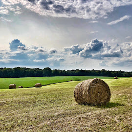 Harvest In Kentucky by Lorna Littrell - Instagram & Mobile iPhone ( hay, bales, iphone, kentucky, landscape,  )