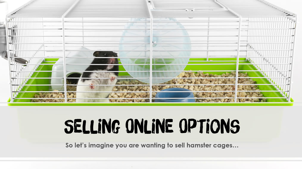 Various Options to Sell Products Online