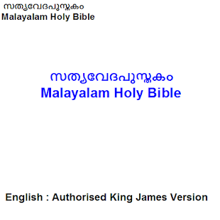 Malayalam Bible : Malayalam/English - náhled