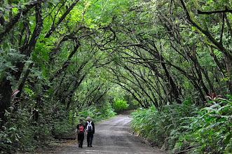 Photo: Walking the road at Cabo Matapalo
