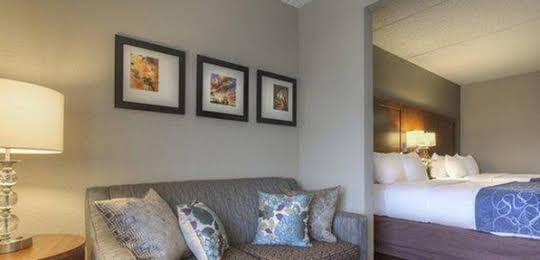 Comfort Suites Pineville