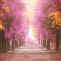 autumn free wallpaper icon