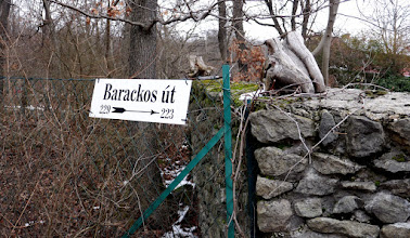 Photo: Szentendre - Szabadság-forrás felett, a Barackos út végén.