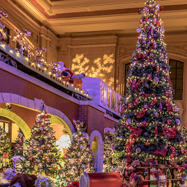 by Jackie Eatinger - Public Holidays Christmas (  )