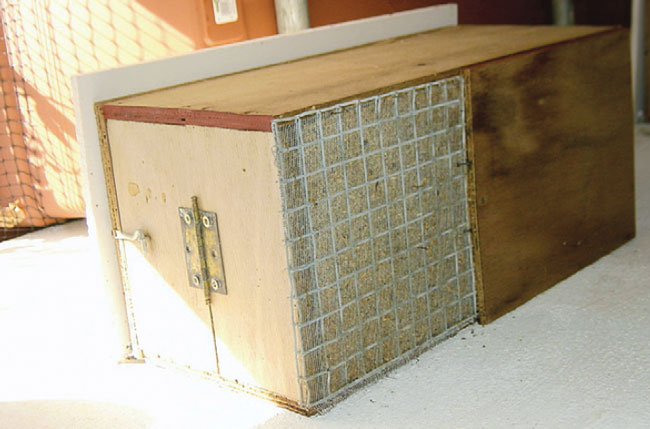 A nest box for lories, built using wire mesh for the floor, allows the liquid feces to drop and ensures better ventilation
