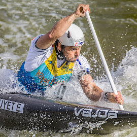 Paddling Hard by Paul Milliken - Sports & Fitness Watersports ( canoe, canoeing, whitewater, paddle )