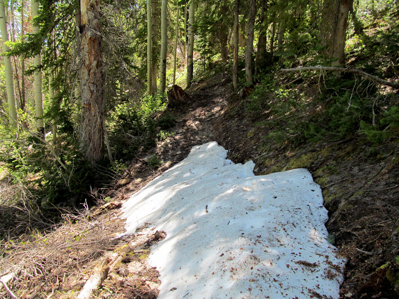 Photo: Snow drift on the trail