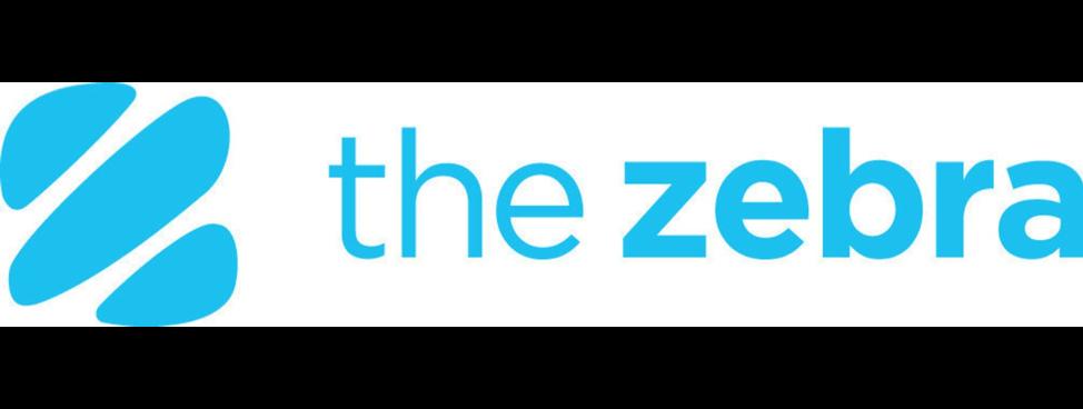 The Zebra Banner