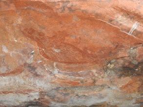 Photo: Day 2 - Rock Ringtail Possum painting at Ubirr