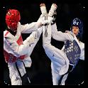 Taekwondo Guide icon