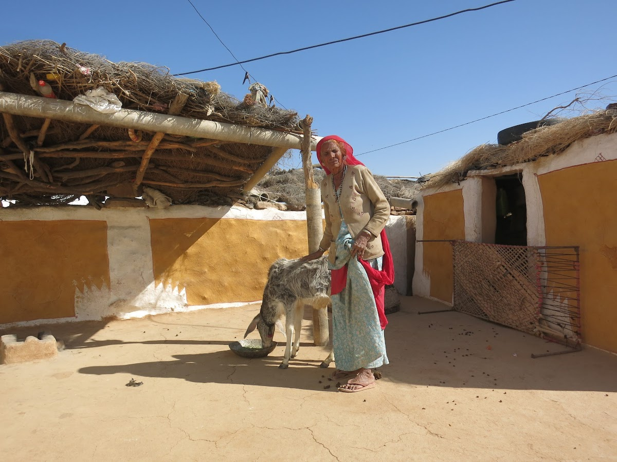 India. Rajasthan Thar Desert Camel Trek. Inside the front courtyard