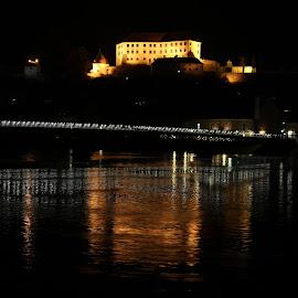 The Castle of Ptuj Above Drava River by Igor Martinšek - Buildings & Architecture Public & Historical
