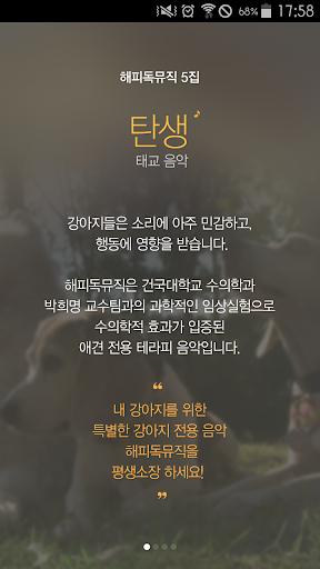해피독뮤직 5집