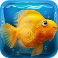 iQuarium - virtual fish apk