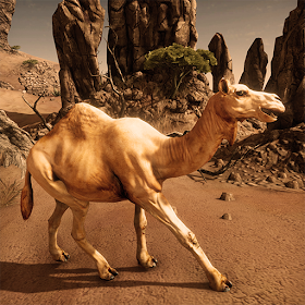 Ultimate Camel Simulator