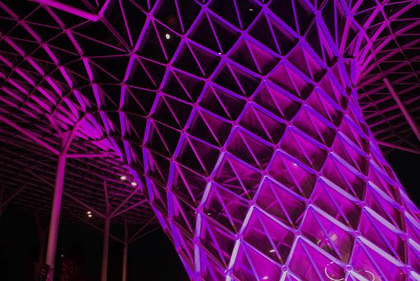 Light Pink di Silvano