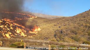 Imagen del Infoca del incendio de Castro de Filabres.