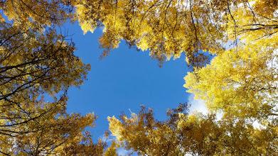 Photo: Powder blue Colorado skies.