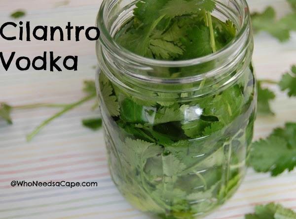Cilantro Infused Vodka Recipe