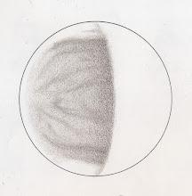 Photo: Vénus le 6 mai 2015 à 19h10TU. T406 à 350X en bino et filtre W47.