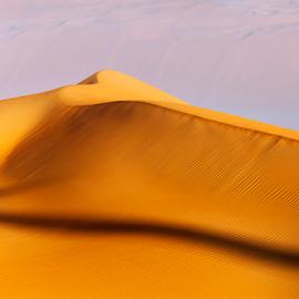 Desert in my heart by Viktoryia Vinnikava - Landscapes Deserts ( emirates, sand, warm, heart, desert, uae, landscape,  )