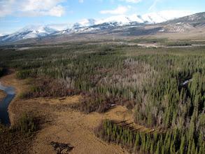 Photo: The Trench, Between Watson Lake, Yukon and Mackenzie B.C.