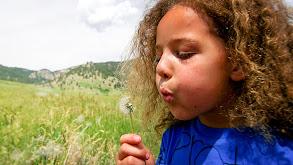 Kids Who Love the Earth thumbnail
