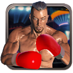 Real 3D Boxing Punch 2.6