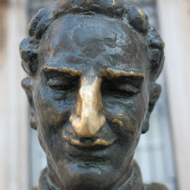 Marin Drzic by Miho Kulušić - Buildings & Architecture Statues & Monuments ( historic district, metal, statue, historical, monument, portrait, bronze, smile )