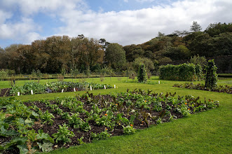 Photo: The kitchen garden, at Kylemore Abbey