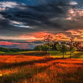 Askim, Norway 129 by IP Maesstro - Landscapes Sunsets & Sunrises ( ip maesstro, hdr, park, nature, sunset, sunrise, askim, norway,  )