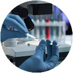 Baseline Antibody Research