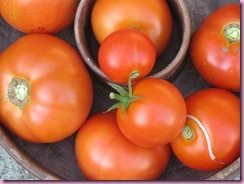 fall tomatoes 002