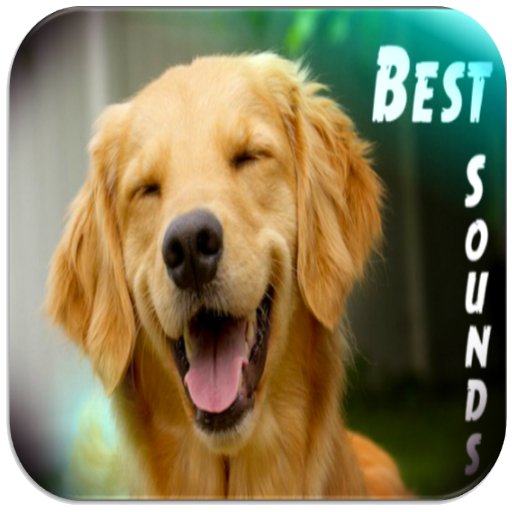 Dog Sounds