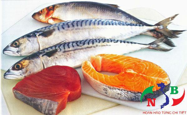 Lưu ý cần biết khi thiết kế kho lạnh bảo quản cá