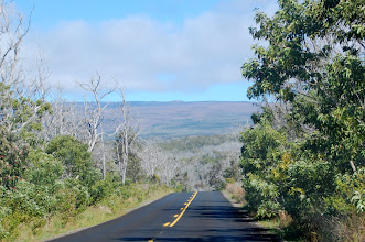 "Photo: Driving up to the trailhead, our destination, Pu`u Ula Ula (""Red Hill""), is visible as a bump on the horizon."