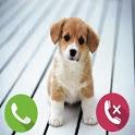Fake Call Dog icon