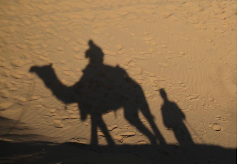 Ombre nel deserto di Migliu